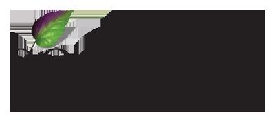 Segovin Tekstil Logo